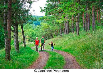 森, 緑, 家族, 歩きなさい