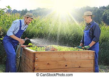 植えつけ, 上げられた, 園芸, 庭, 父, ベッド, 息子