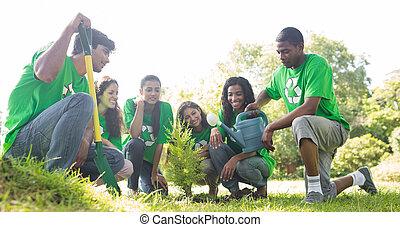 植えつけ, environmentalists, グループ