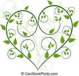 植物群的設計, 矢量