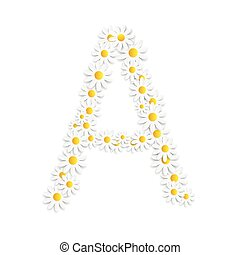 植物群, 字母表, 矢量, 设计, 雏菊, illustartion