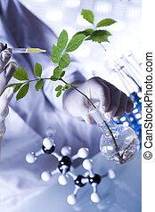 植物, そして, 実験室
