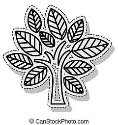植物, エコロジー, 木, 隔離された, cion