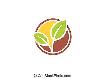 植物, エコロジー, 葉, 抽象的, ベクトル, ロゴ, 種