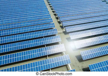 植物, クローズアップ, 太陽エネルギー