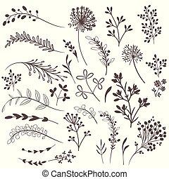 植物, コレクション, ベクトル, デザイン, 無作法
