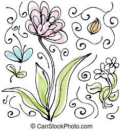 植物, セット, 図画