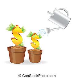 植物, ドル