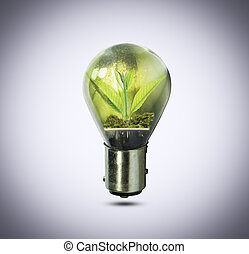 植物, ライト, 中, 小さい, 成長する, 電球