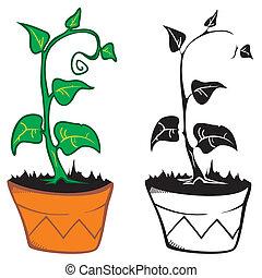 植物, 中に, ポット