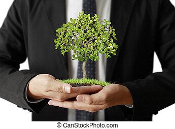 植物, 人, 手を持つ