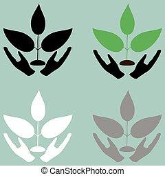 植物, 在, 小心, 頭, icon.