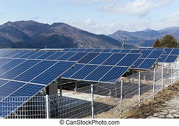 植物, 太陽エネルギー, 力, パネル