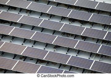 植物, 太陽エネルギー, 力