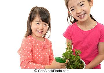植物, 女の子