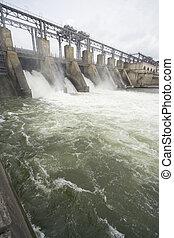 植物, 川, 水力発電の力