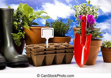 植物, 工具, 花園, 靴子