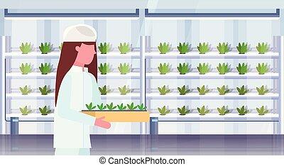 植物, 平ら, 女, 有機体である, 縦, 農場, 産業, 現代, ユニフォーム, 概念, 保有物, 内部, 肖像画, potted, 農業, 農業, 横, エンジニア