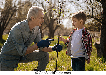 植物, 幸せ, おじいさん, 提示, 若い