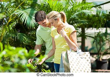 植物, 幸せ, 買い物, 恋人, 若い