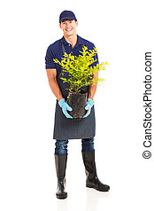植物, 庭師, 保有物