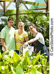 植物, 恋人, 若い, 買い物