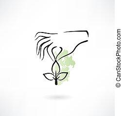 植物, 手の 保有物, アイコン