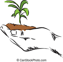 植物, 手, イラスト, 掛かること