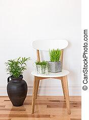 植物, 木製である, 白, 緑の椅子