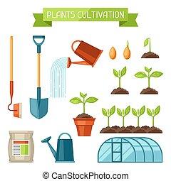 植物, 植物, セット, 実生植物, 耕作, プロセス, 肥料, 成長, 温室, 道具, objects., 農業, ...