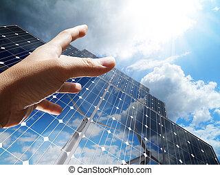 植物, 概念, 太陽, リーチ, 手, 回復可能, 太陽, sun-power, 代替エネルギー