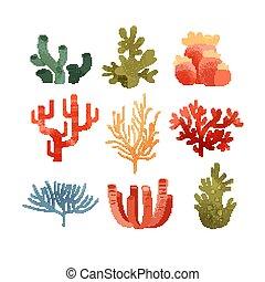 植物, 水中, カラフルである, セット, ベクトル, 海草, 背景, イラスト, 白, 海洋