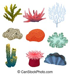 植物, 水中, 別, 海, アイコン, 色, 珊瑚, 種類, 漫画, 砂洲, bottom., set.