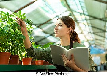 植物, 温室, 点検, 勉強, イメージ, ノート, 手, 花屋, 女の子, ∥あるいは∥