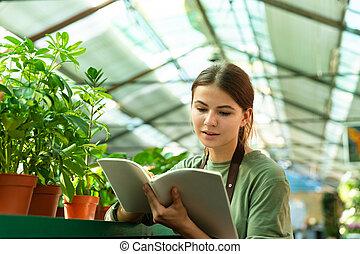 植物, 温室, 点検, 勉強, イメージ, 記録, コーカサス人, 手, 女の子, ∥あるいは∥, 庭師