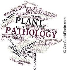 植物, 病理学