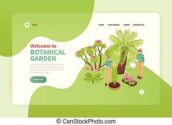 植物, 等大, 旗, 庭