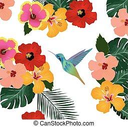 植物, 背景, 蜂鳥