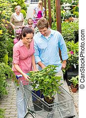 植物, 花, 買い物, 園芸用品センター, 恋人, 若い