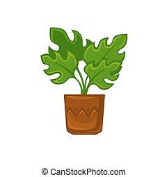 植物, 花, illustration., ポット, ベクトル, leave.