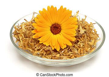 植物, 花, ond, 乾かされた, 花, officinalis, calendula, 薬効がある