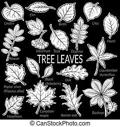 植物, 葉, セット, pictogram