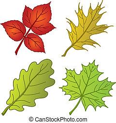 植物, 葉, 2, セット