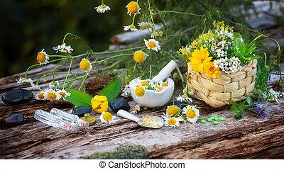 植物, 薬効がある, ホメオパシー, カモミール