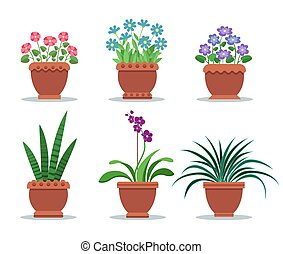 植物, 装飾, 部屋, ポット, デザイン, 粘土, 内部