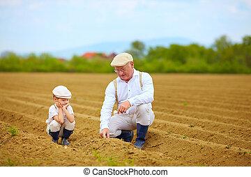 植物, 説明, 彼の, 孫, おじいさん, 方法, 成長しなさい