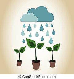 植物, 雨