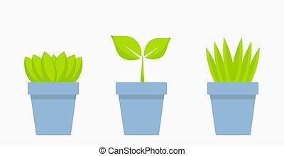 植物, 青, ポット, icons., 家