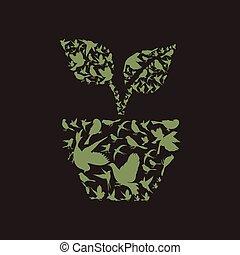 植物, 鳥