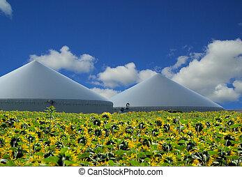 植物, biogas, 35